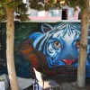 animal_world_mural_6